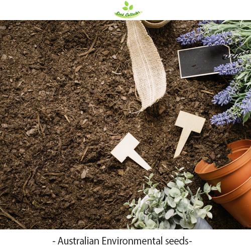 Australian environment seeds